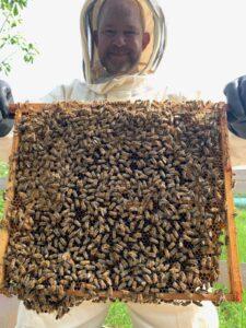 independent honey maker